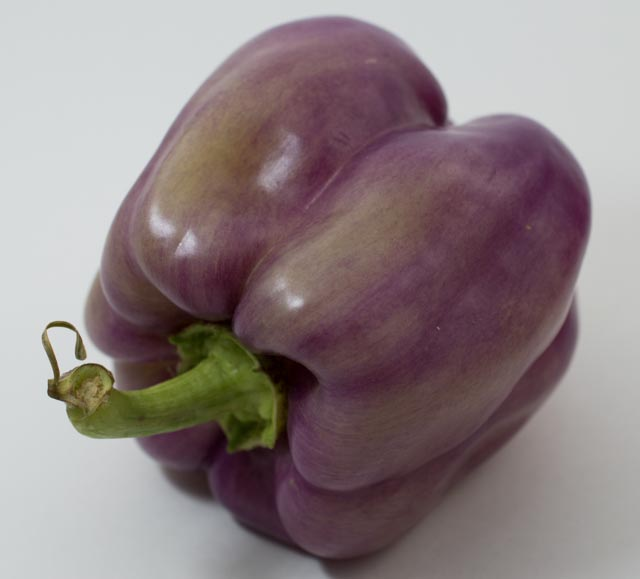 purple.pepper