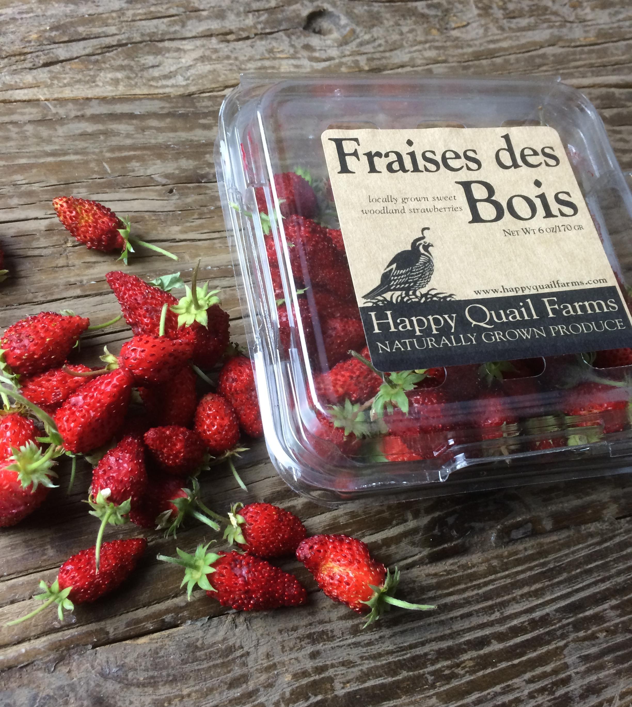 fraisedesbois