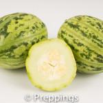 Mandurian Cucumber